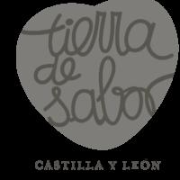 logo_TS_1